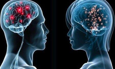 differenze tra maschi e femmine