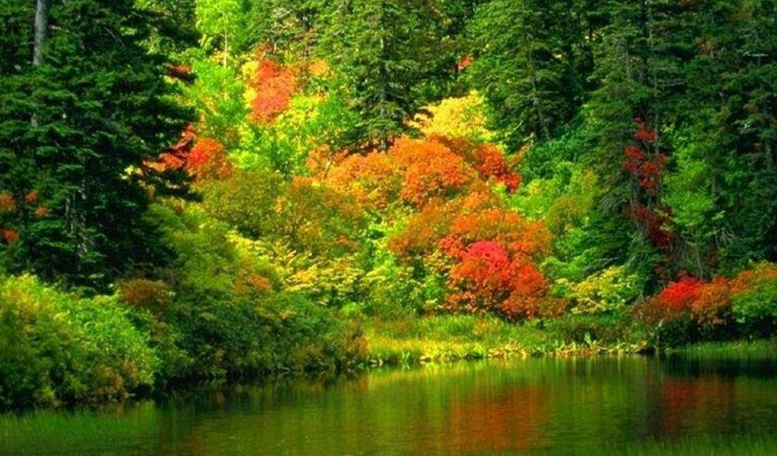 Grandi manovre di inizio autunno