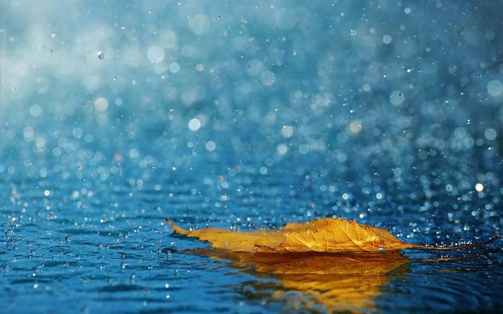 La pioggia, l'anima e il creato