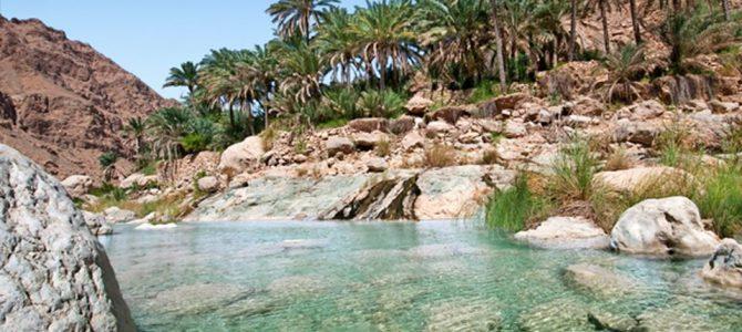 Una piccola oasi